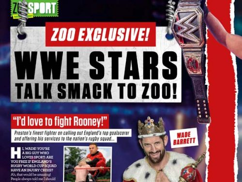 wwe superstars zoo